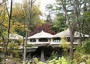 Case degli Hobbit: dimore degli Elfi a Pitsford (New York, Usa)