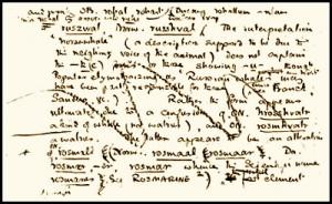 Appunti di Tolkien per l'Oxford English Dictionary