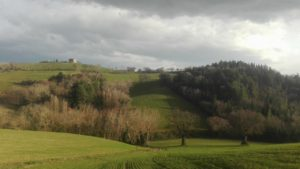 Trecastelli