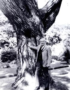 Tolkien all'Orto Botanico di Oxford