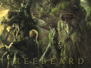 Treebeard - Barbalbero
