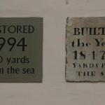 16. Kilnsea Blue bell
