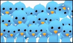 Concorsi: Twitter contest cinguettii