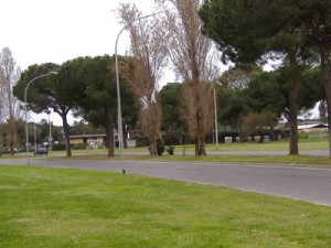 Roma: Csp Casalpalocco