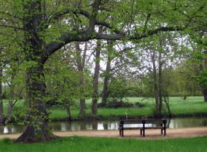 Oxford: panchina con targa su Tolkien