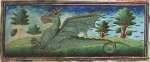 """Drago, dal """"Bestiario MMW"""", 10 B 25, Folio 39r, 1450 ca., Museum Meermanno, l'Aja"""