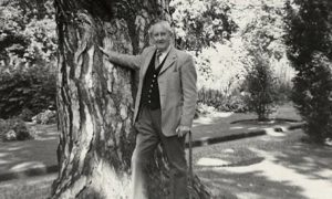 Tolkien appoggiato ad un albero